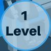 Level 1 image