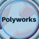 polyworks image